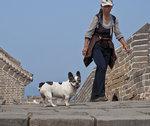 I Climbed the Great Wall of China