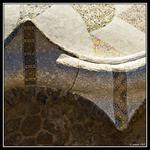 Mosaic thorns