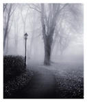 Bad Fog Of Loneliness