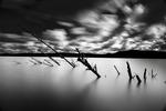 Light & Silence Inshore