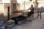 Havana pig