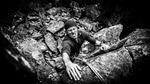 Climbing Face