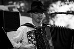 Kroke Accordionist
