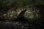 Den gamla stenbron