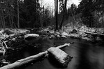 Black Creek Water
