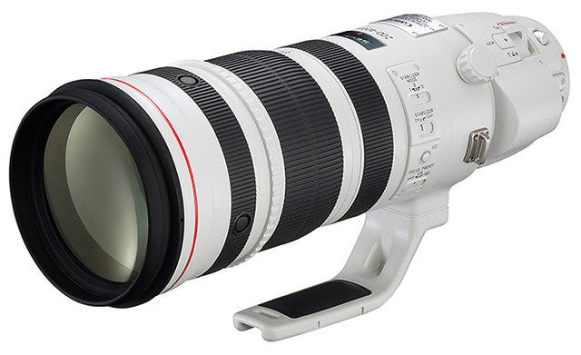 Canon EF 200-400mm f/4 L IS USM (Extender 1,4x)