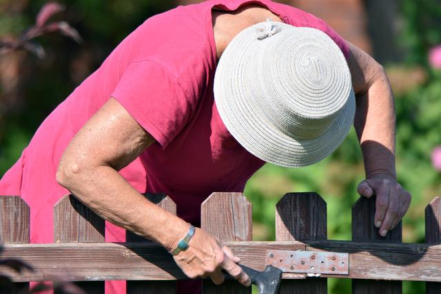 DSC_1529 Margaret skrapar staketet