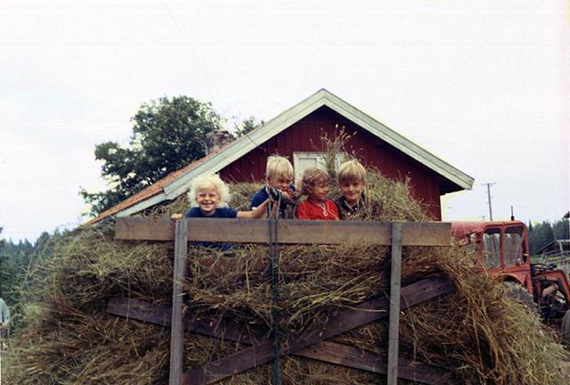 061Höbärgning på Drabo 1970