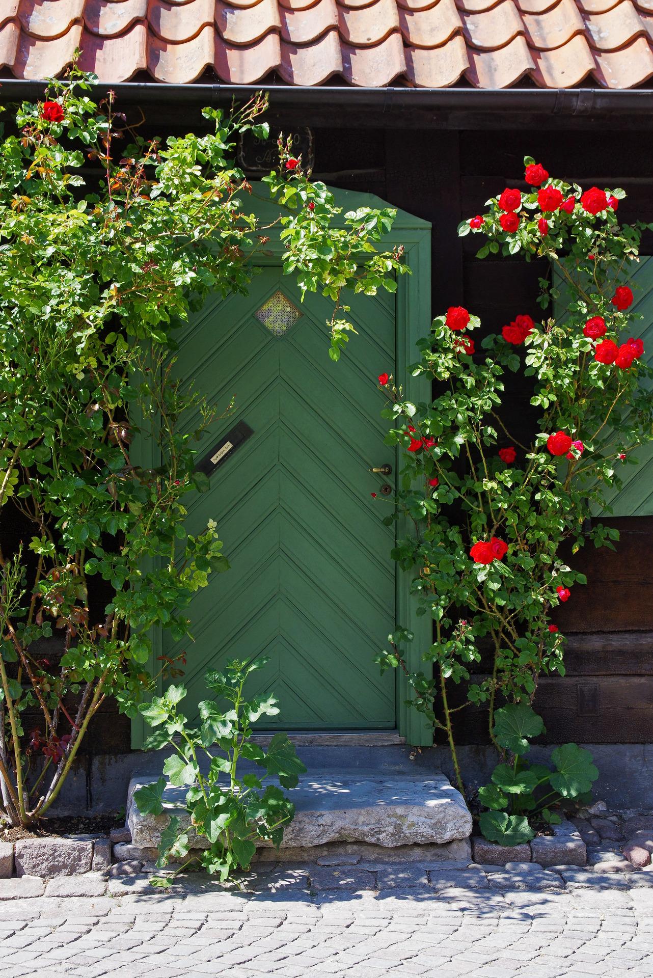 Gotland 2018, Visby, rosornas stad... - Fotosidan