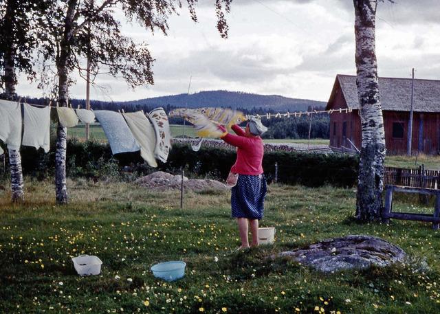 Mamma hänger tvätt på Lillåkern 1965002