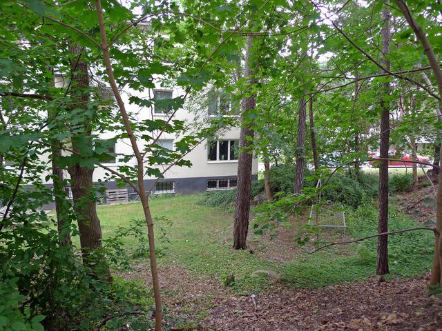 Bakgården på huset vi bodde i P1020276
