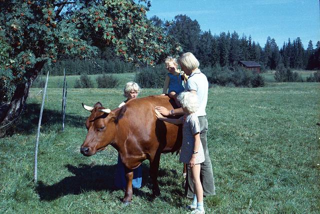 025Sommar på Drabo 1972