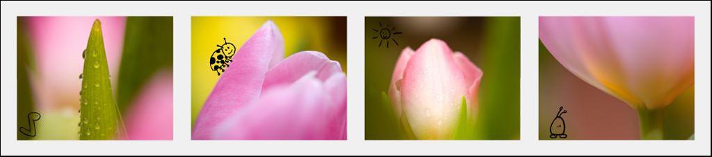 http://www.fotosidan.se/cldocpart/40287.jpg