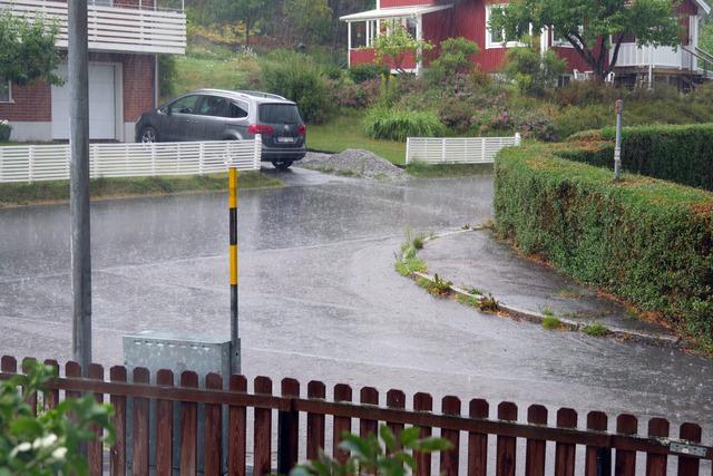 P1010274 En kraftig regnskur