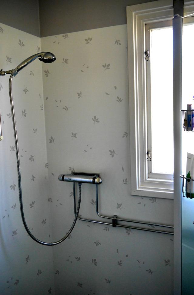 Duschplatsen P1030495