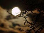 Fullmåne lördag