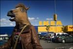 Häst på IKEA