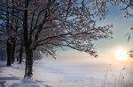 Kall dag