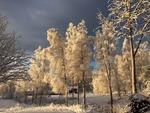 Nyår i Branäs