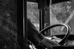 Busspegling