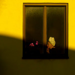 kvinnan i fönstret brevid