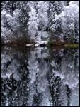 Vinterspegling