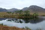 Irlands otroliga landskap