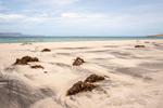 Strand, Baja California