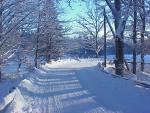 En snöig kurva