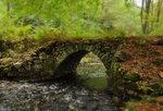 Den gamla bron i grönska