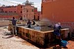 Garveriet i Marrakesh - sköljkar med vatten