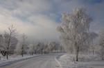 Lite vinter