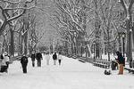 En vinterdag i Central Park