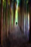 Mannen i skogen