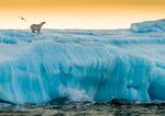 Svalbard september 2015