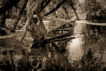 En ensam kvinna paddlar under trädvalven på Dal Lake