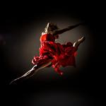 Norrdans - Norrlands största danskompani för modern dans