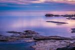 Purple Evening