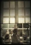 Kvinnan  i fönstret