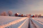 Vinterns skönhet