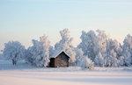 Vinterladan