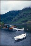 Båtar vid Lofoten