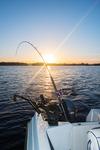 Slutet på fiskedagen
