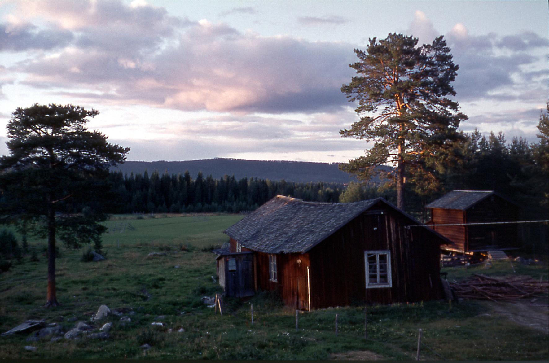 Vedboden och hemlighuset på Lillåkern 1965