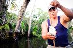 fiska piraya i djungeln, Ecuador