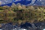 Naturens spegel.