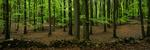 Klövahallar naturreservat