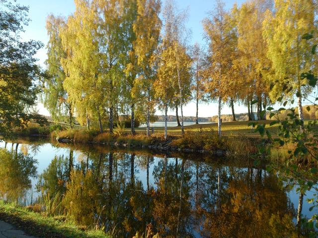Utsnitt av Bottenån i Lindesberg i oktober 2013