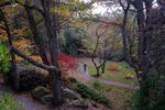 Botaniska trädgården  1