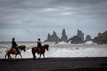 Horses on black sand